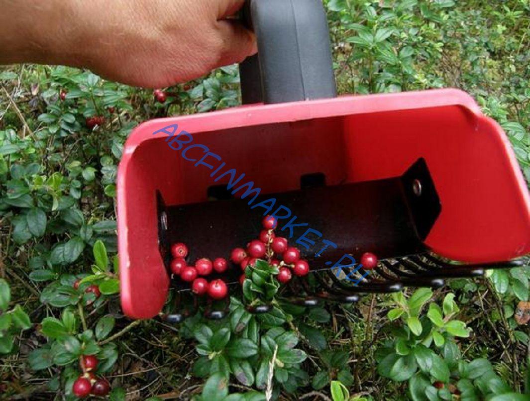 Как сделать комбайн для ягоды 159